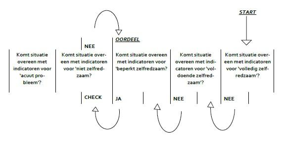 Schematisch weergave hoe een beoordeling van de zelfredzaamheid op een domein komt.